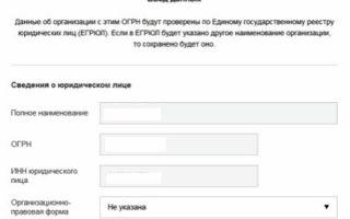 Регистрация фирмы онлайн через интернет для ИП и ООО: как начать бизнес