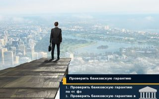 Реестр банковских гарантий: №223-ФЗ, как проверить документ