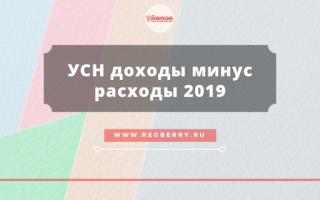 Декларация «доходы минус расходы» для ип: как заполнить в 2019-2020 годах