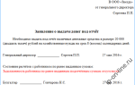 Учет расчетов с подотчетными лицами: образец заявления о выдаче денег