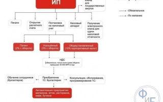 Регистрация ИП через МФЦ: открытие и оформление, алгоритм и необходимые документы