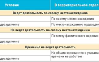 Статистическая форма 1-т: скачать бланк, образец заполнения