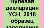 Нулевая отчетность ООО на УСН в 2019 году: образец и порядок заполнения
