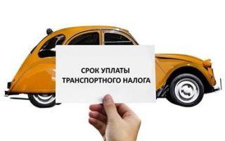 Кто освобождается от уплаты транспортного налога: категории граждан, процесс освобождения в 2019-2020 годах
