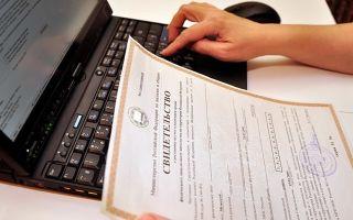 Сколько стоит открыть ИП в 2019 году: цена на регистрацию