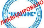 Пошаговая инструкция по ликвидации ООО в 2019-2020 годах: образец решения