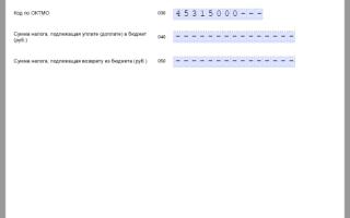Образец заполнения 3-НДФЛ «нулевая» для ИП: как правильно составить декларацию