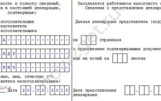 Правила заполнения декларации 3-НДФЛ: образец и пошаговые инструкции