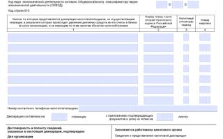 Заполнение декларации по налогу на прибыль: кто подаёт, отчётный период, срок подачи, пошаговая инструкция для заполнения, нулевая декларация, правила оформления