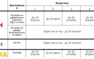 Отчётность по патенту: преимущества ПСН, общие положения и отчётность ИП