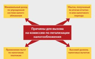 Комиссия по легализации налоговой базы: цель, отбор субъектов и критерии отбора, организация процедуры, состав комиссии, протокол, что говорить перед комиссией