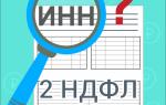 Подача справки 2-НДФЛ при отсутствии ИНН: основные требования и выдача документа