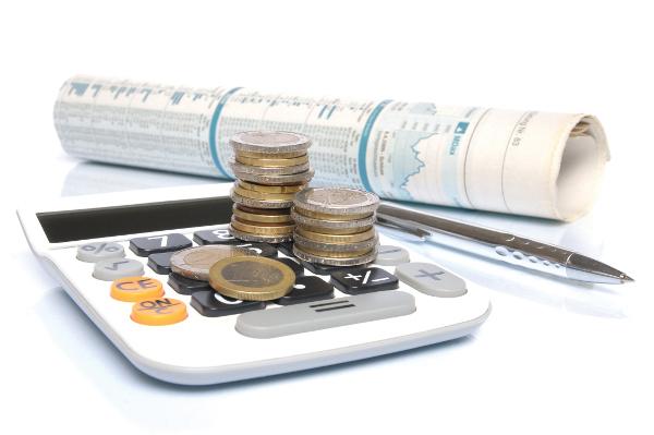 Бухгалтерский учет в бюджетных организациях, его особенности и централизация на 2019-2020 годы: основы и ведение, счета