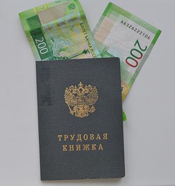 Где купить трудовую книжку и ее стоимость: цена чистого бланка, оформление