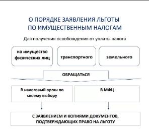 Освобождение от налогов ветеранов боевых действий, пенсионеров, предпринимателей, организаций и физических лиц в 2019-2020 годах: НК РФ, виды налогов