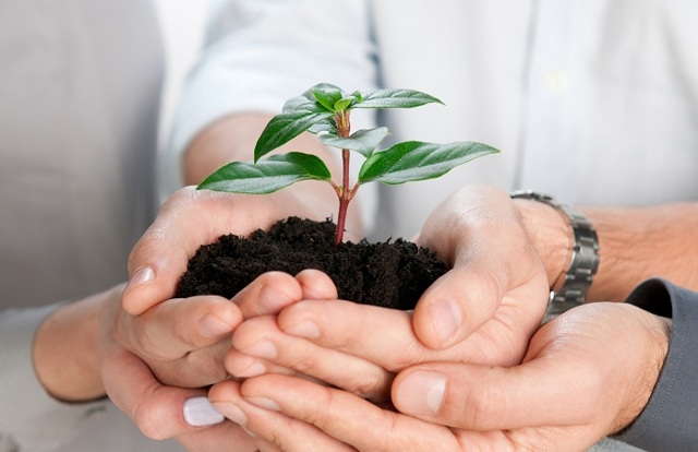 Популярные и новые франшизы для малого бизнеса