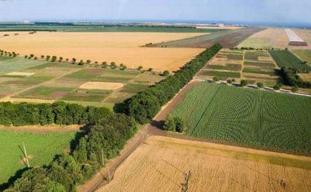 Типовой договор аренды земли: скачать бесплатно образец, регистрация, особенности для земель сельскохозяйственного назначения, при заключении между юридическими лицами