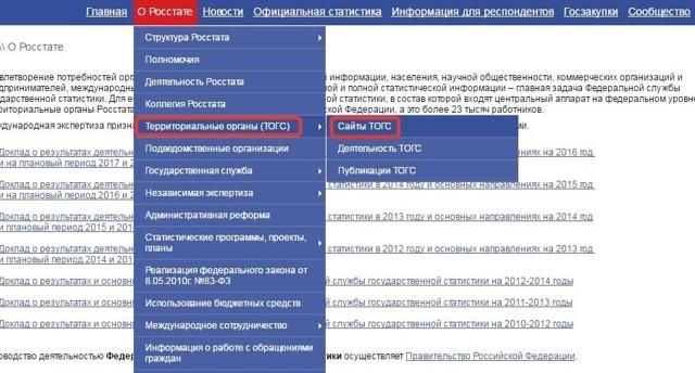 Как узнать коды Росстата РФ: определение ОКПО по ИНН