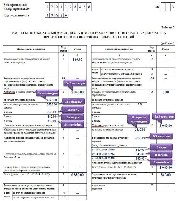 Нулевая отчетность в ФСС в 2019-2020 годах: образец заполнения, основные правила и требования по оформлению