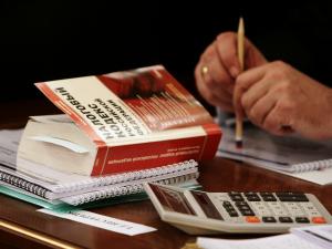 Задолженность по налогам: причины возникновения, способы проверки и погашения, ответственность за неуплату