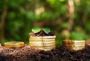 Земельный налог: сроки сдачи в 2019-2020 годах, когда сдается декларация