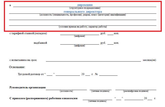Приказ о назначении директора ООО: образец 2019-2020 годов, форма для генерального и коммерческого директора, в случае одного и двух учредителей